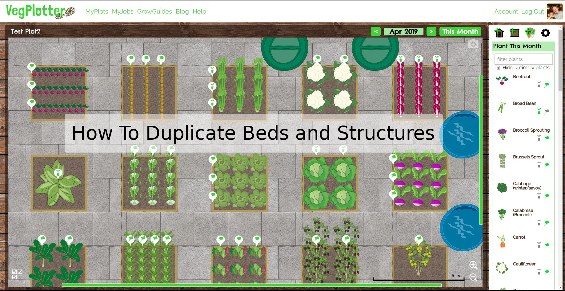 You can quickly design your vegetable garden using the duplicate feature of VegPlotter.
