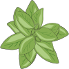 Icon showing Comfrey