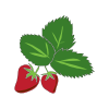 Icon showing Strawberry